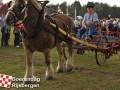 20110806boerendagrijsbergen099