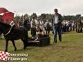 20110806boerendagrijsbergen100